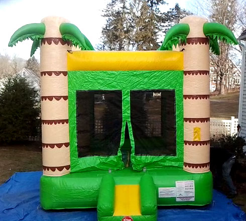 New York Palm Tree Bounce House Rental